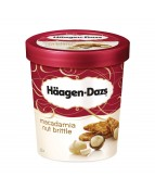 HAAGEN-DAZS MACADAMIA NUT ICE CREAM 473ml - 1 PINT: 473 ...